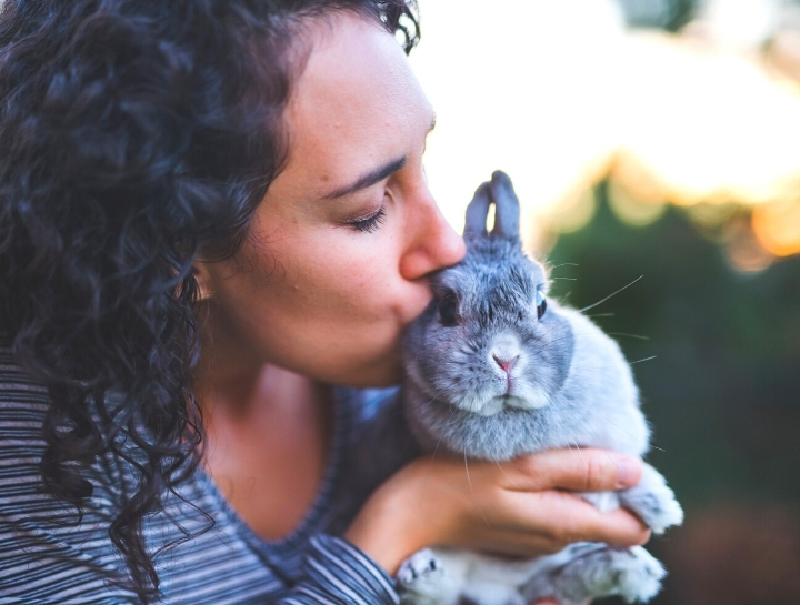Why Your Rabbit Needs an Annual Vet Visit